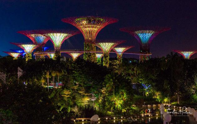 Gardens by the Bay ist ein 101 Hektar großes Parkgelände, das im zentralen Bezirk Singapurs auf künstlich aufgeschüttetem Land angelegt wurde.