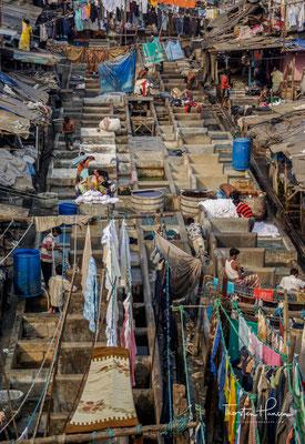 Die Kaste der Wäscher verdient in der Regel um die 10.000 Rupien im Monat zusammen - ca. 120 Euro.