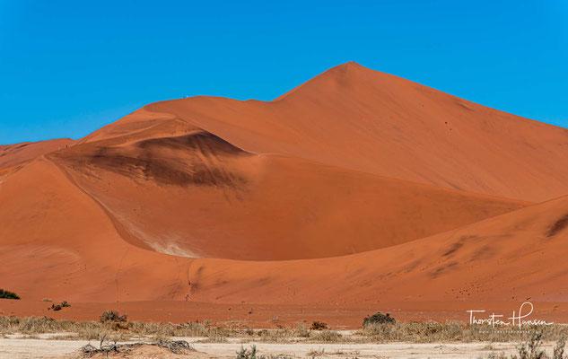 """Die """"Big Daddy"""" Düne ist eine Sterndüne westlich des Sossusvlei am Rande des Deadvlei in der zentralen Namib Namibias."""
