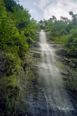 Die Pagsanjan Fälle sind eingefasst durch steinerne Klippen, die fast 100 m in den Urwald aufragen und mit wilden Orchideen, Farnen und Kletterpflanzen bewachsen sind.