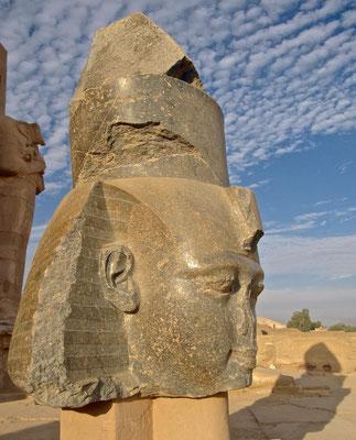 Kopf Ramses II im Ramesseum