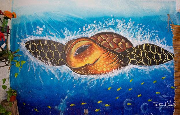 Barra Vieja Beach - Schildkrötenstation