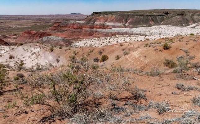 Der Petrified-Forest-Nationalpark gehört zum südlichen Colorado-Plateau und der Painted Desert, einer Wüste auf rund 1800 m über dem Meer.