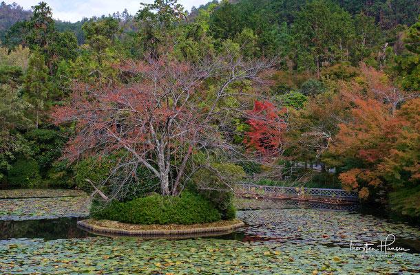 Ryōan-ji (japanisch 龍安寺, deutsch 'Tempel des zur Ruhe gekommenen Drachen'