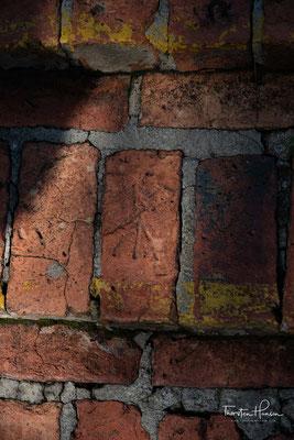 Wenn Sie die Treppe des Pflanzenhauses hinauflaufen, sollten Sie genauer hinschauen. Die Ziegelsteine dieser Treppe wurden von Kriegsgefangenen während des 2. Weltkrieges gefertigt und als stiller Akt des Widerstands mit Pfeilen versehen.