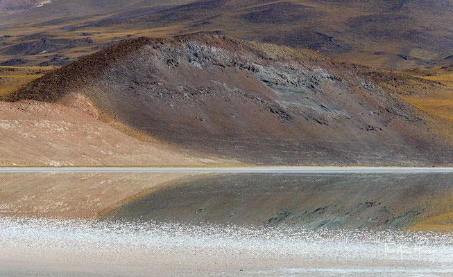 Der wichtigste Zufluss ist der Río Alitar, der aus Richtung Norden von der bolivianischen Grenze kommt.