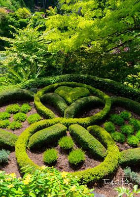 Der Garten wurde 1904 von Jennie Butchart angelegt. Sie wollte den aufgelassenen Steinbruch verschönern, in dem ihr Ehemann Robert Pim Butchart Kalkstein für Portlandzement hatte abbauen lassen.