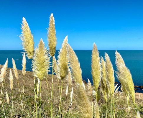 Es liegt in der Nähe von Punta del Este in Punta Ballena in Uruguay.
