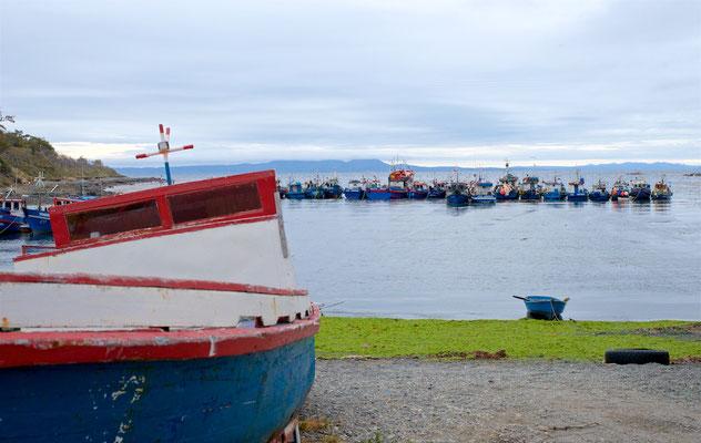 Puerto del Hambre (deutsch: Hungerhafen) ist ein Naturhafen auf der Brunswick-Halbinsel an der Nordküste der Magellanstraße, rund 60 km südlich von Punta Arenas in Chile gelegen.
