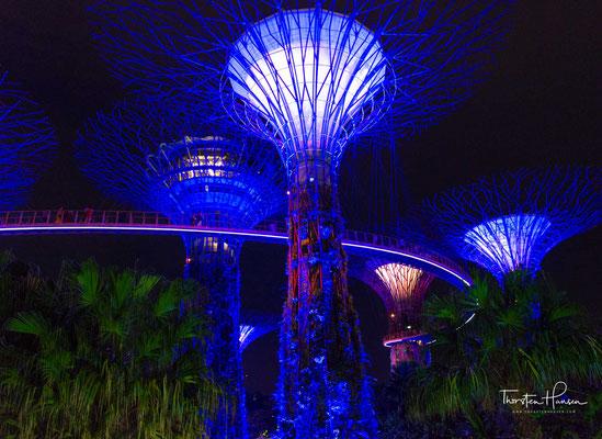 Eine weitere Einrichtung sind die Super Trees, pflanzenbewachsene Stahlgerüste mit Höhen zwischen 25 und 50 Metern. Sie dienen unter anderem der Aufzucht von seltenen Pflanzen