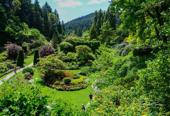 Butchart Gardens ist ein 22 Hektar großer, privater Blumengarten und befindet sich auf der Saanich Peninsula im Süden von Vancouver Island.