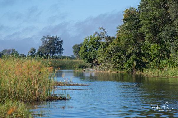 Der Okavango an der Nambwa Tented Lodge