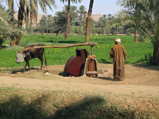 Dorfszenen aus Abu Sad