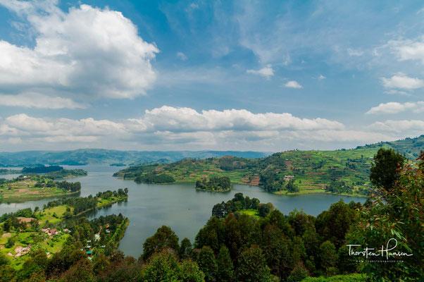 Steile, terrassierte Hänge fallen hinab zu den vielen Buchten und Verästelungen des Sees. Auf seinen 29 Inseln wachsen Eukalyptusbäume und Bananenstauden. Am Horizont tupfen Wolkenbäusche die Gipfel der Virunga-Vulkane.
