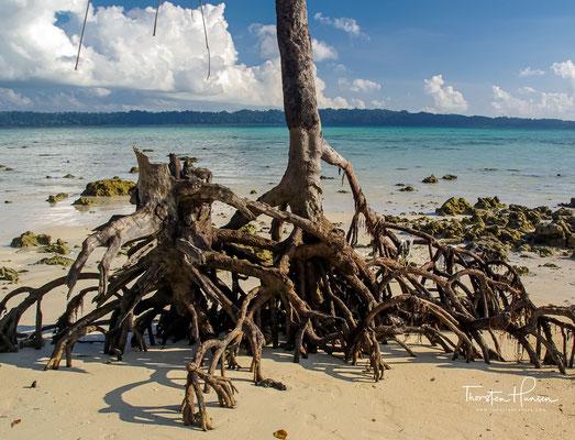 on den mehr als 500 Inseln des indischen Unionsterritoriums sind nur drei Dutzend bewohnt und noch weniger für Reisende zugänglich.