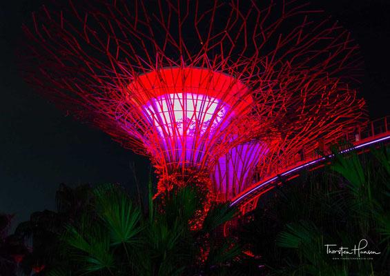 Sie wurden beim World Architecture Festival 2012 als Gebäude des Jahres ausgezeichnet. Das größere Glashaus, der 1,28 Hektar Fläche überdeckende Flower Dome, wurde als größtes Glasgewächshaus der Welt ins Guinness-Buch der Weltrekorde 2015 aufgenommen.