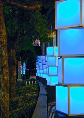 Roppongi Lichterkunst