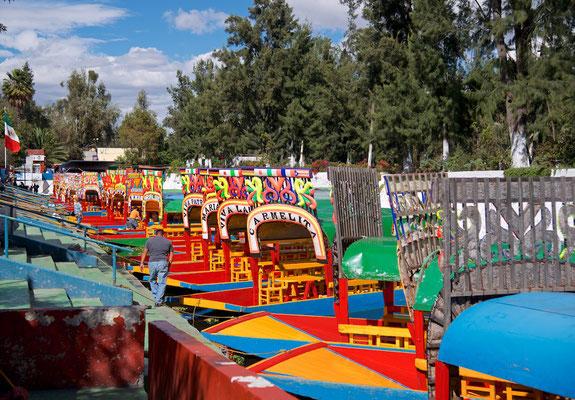 Boot in den Chinampas von Xochimilco