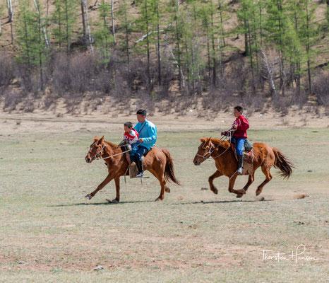 Mongolen treffen sich zum Naadam. Der vollständige Name lautet Eriin Gurwan Naadam - Die drei männlichen Spiele