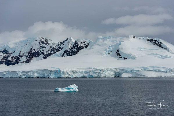 Die Wilhelmina Bay ist eine 25km breite Ausbuchtung im Süden der Gerlachstraße, die sich weit in die Antarktische Halbinsel hineinschiebt.