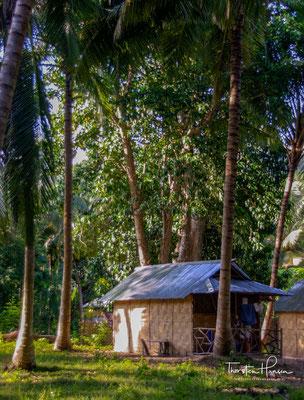 Der Südteil besteht aus undurchdringlichem Wald und die meisten Dörfer und Strände sind durchnummeriert.