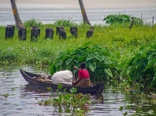 Weitere große Gewässer sind der Ashtamudi- und der Kayamkulamsee.