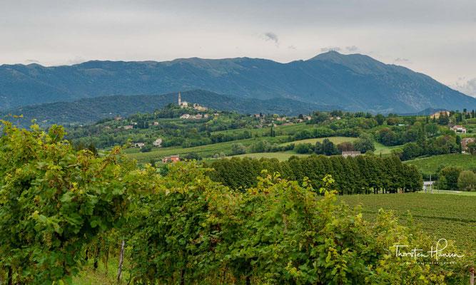 """Prosecco col Fondo ist die ursprüngliche, althergebrachte Variante des Prosecco. Der Wein moussiert durch natürliche Flaschengärung und präsentiert sich """"col fondo"""", mit dem Bodensatz aus natürlicher Weinhefe, die ihm den Duft nach Brotkruste verleiht."""