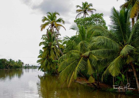 Zahlreiche landwirtschaftliche Flächen wurden durch Eindeichung flacher Seeabschnitte gewonnen.