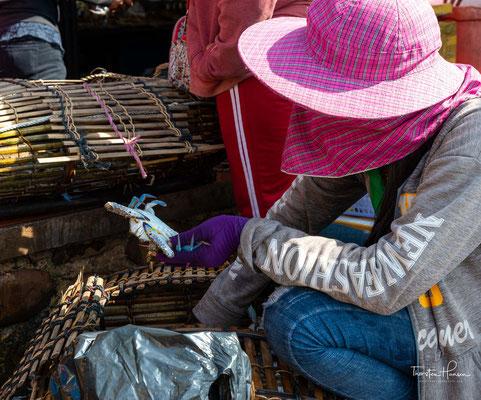 Der Fischverkauf auf dem Crab Market in Kep liegt komplett in Frauenhand.