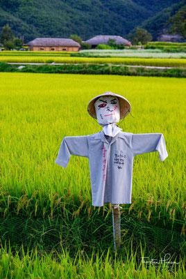 """Dieses Dorf 25 Kilometer westlich der Innenstadt gilt als der """"am meisten koreanische Ort"""" Südkoreas und ist seit 2010 UNESCO-Weltkulturerbe"""