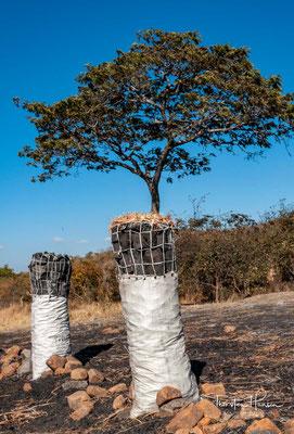 Im Norden stellt das Bangweulubassin den Boden eines riesigen Kraters dar, das im Süden von der Hochebene des Copperbelt, im Westen vom langen Luapulatal, im Norden von den Mporokosobergen und im Osten vom Muchinga-Gebirge begrenzt wird.