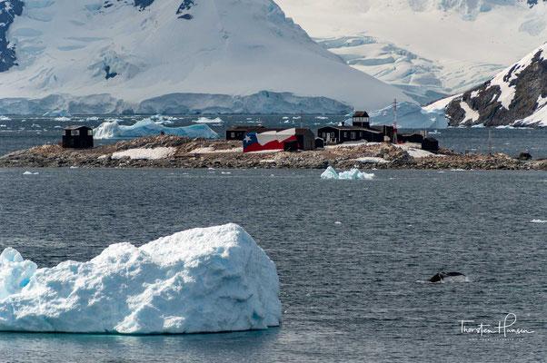 Die González-Videla-Antarktis-Station ist eine Einrichtung Chiles und nach dem früheren Staatspräsidenten Gabriel González Videla benannt, dem ersten Staatsoberhaupt, das die Antarktis besuchte.