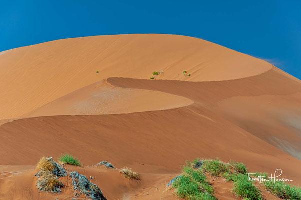 Die orange Farbe des Sandes wird durch Eisenoxid hervorgerufen,[5] schwarze Bereiche der Dünen bestehen aus Magnetit.