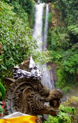 Der Git Git Wasserfall ist 35 Meter hoch und fällt im Wald tosend in das Becken das sich an seinem Fuß gebildet hat.