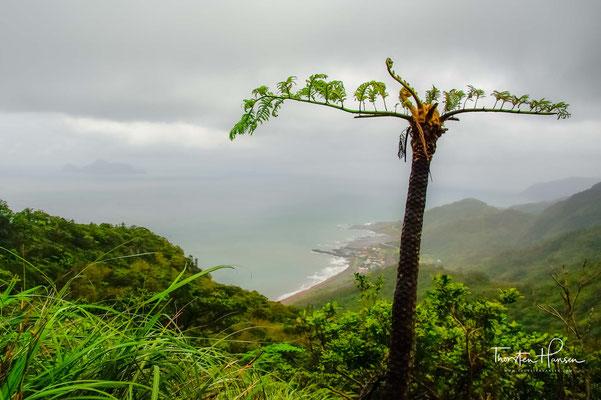 Ein fantastischer Blick über die Küste, das Dorf Daxi und Turtle Island in der Ferne
