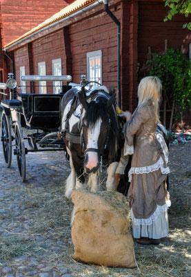 "Freilichtmuseum ""Gamla Linköping"""
