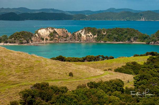 In den späten 1800er Jahren pachteten zwei Europäer Weideland auf der Insel, begannen die Insel zu roden und einen Zaun zu bauen.