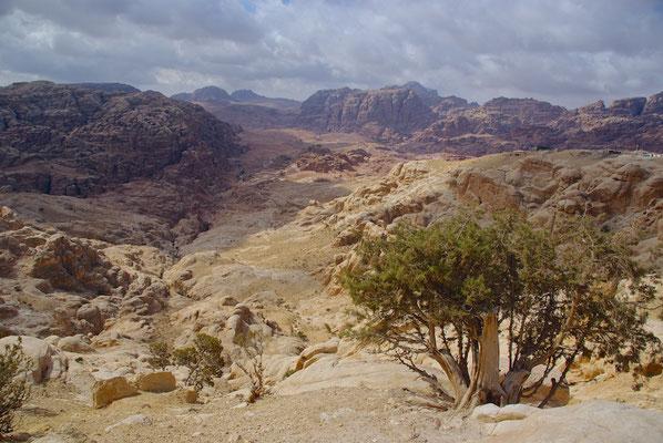 Blick auf die Felsenstadt Petra