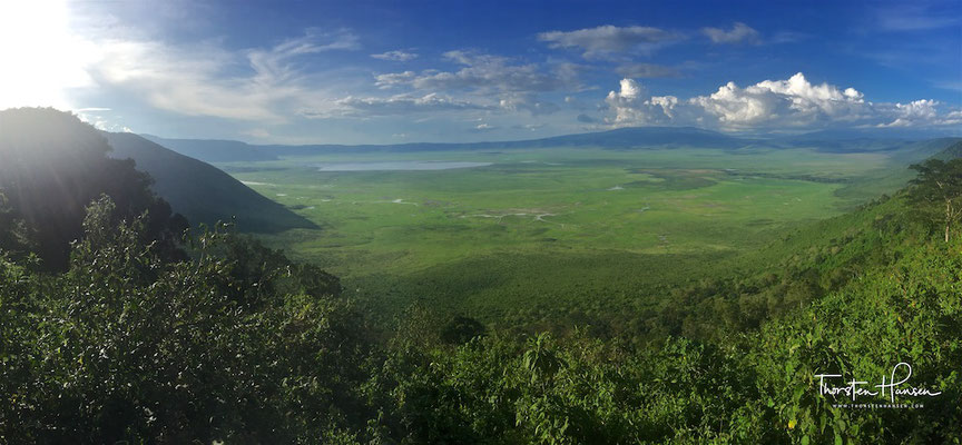 Panoramaausblick in den Krater (Anfang der Regenzeit) des Ngorongoro-Krater