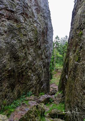 Die Menschen aus den Siedlungen rund um den Kaitersberg flohen hinein in die dichten Wälder, um sich vor dem feindlichen Heer zu verstecken.