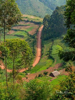Landschaft am Bunyonyi-See in Uganda