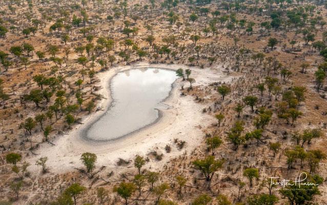 """...den sogenannten Panhandle (""""Pfannenstiel""""), den permanent wasserführenden Unterlauf des Okavangos, die dauerhaften Sumpfflächen am Ende des Panhandle,"""