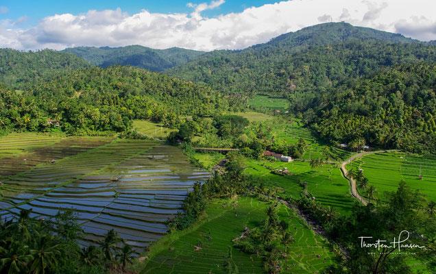 Subaks sind Bewässerungs-Genossenschaften, die auf Bali seit dem 9. Jahrhundert bestehen und die Reisfelder bewirtschaften.