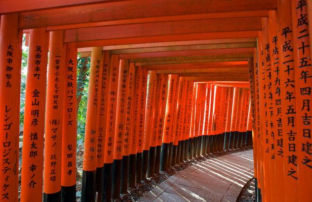Torii-Weg im Fushimi Inari-Taisha in Kyoto