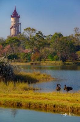 Die Nationalen Kandawgyi Gärten,welcher 1915 von dem Briten Alex Roger gegründet wurde. Angelehnt ist die riesige Anlage mit zahlreichen Teichen, Blumengärten und malerischen Wanderpfaden, die sich hindurch schlängeln.