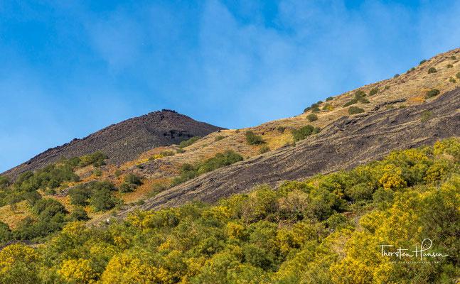 Die dicht besiedelte Landschaft um den Ätna ist durch die verwitternde Lava, die einen ausgeglichenen pH-Wert hat, äußerst fruchtbar.