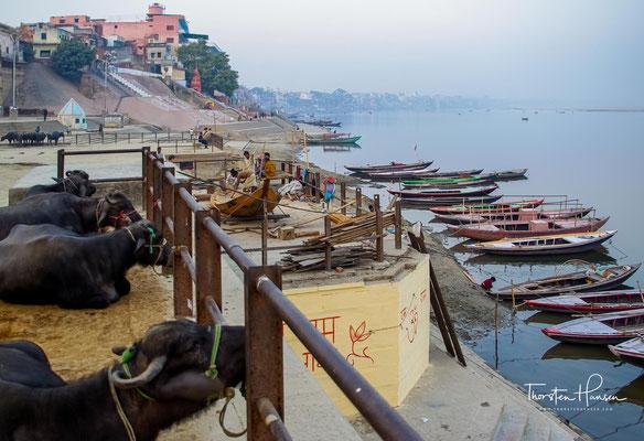 Neben den erwähnten Ganga-Ghats, den etwa einhundert getreppten Bade- und Verbrennungsplätzen, verfügt Varanasi über ca. 200 wichtige hinduistische, jainistische und buddhistische Tempel.