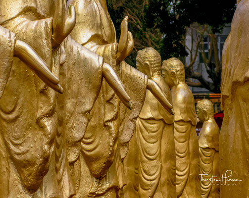Das Ziel des Ordens ist es, dem Buddhismus weltweit zu einer größeren Bekanntheit zu verhelfen aber auch, ihn in das Leben und in die Herzen der Menschen zu bringen.