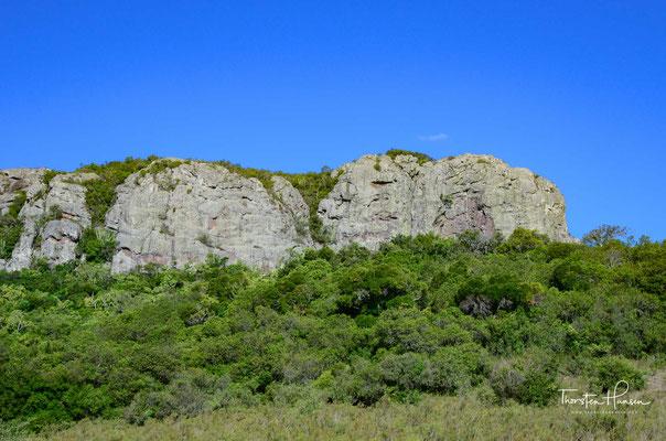 Monte de Ombues in Minas