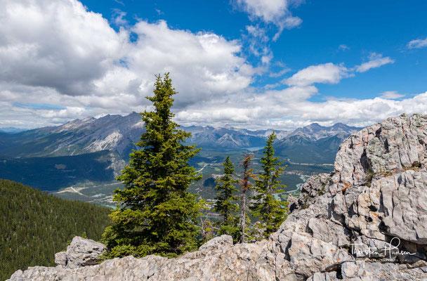Eine Berggondel – ursprünglich eine Anlage nach dem System Bell/Wallmannsberger – führt seit 1959 auf den nahe gelegenen Sulphur Mountain.